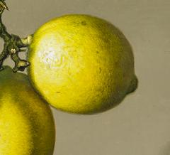 Stone Roberts Two Lemons - 698343