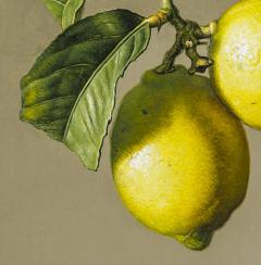 Stone Roberts Two Lemons - 698344