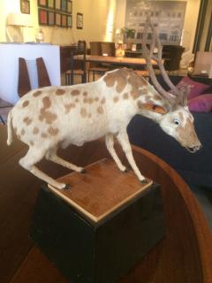 Strange Taxidermyesque Animal on Stand - 274627