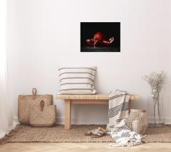 Study of Pomegranate Contemporary Still Life Giclee by Campanile - 2012304