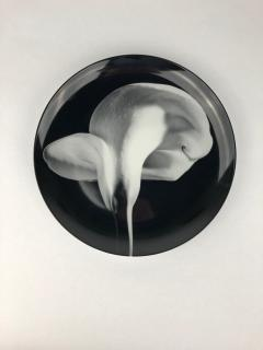 Swid Powell Mapplethorpe Calla Lilly 1984 Plate - 1359922