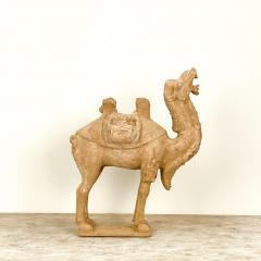 Tang Dynasty Dromidary China 8th Century - 2131149