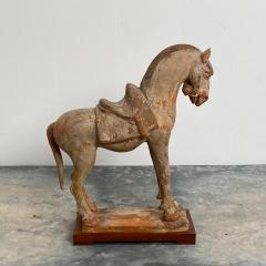 Tang Dynasty Horse China Circa 7th Century - 1580259