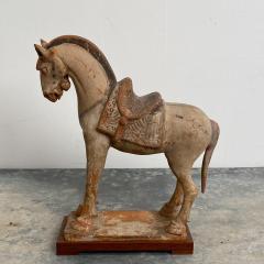 Tang Dynasty Horse China Circa 7th Century - 1580261