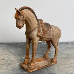 Tang Dynasty Horse China Circa 7th Century - 1580265