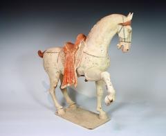 Tang Dynasty Prancing Horse - 1939133
