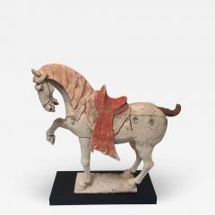 Tang Dynasty Prancing Horse - 1953544