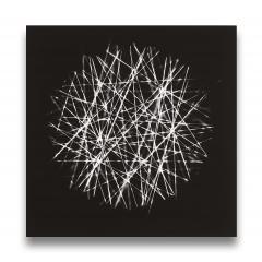 Tenesh Webber Spiral II - 1394162