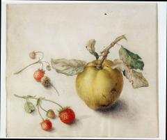 Teresa Berenice Vitelli A Peach with Two Strawberry Vines - 154095