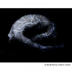 Thalie B Vernet de Beaulieu DOLORIS ALMA MUNDI Photography - 610344