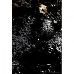 Thalie B Vernet de Beaulieu JEANNE Photography - 948769