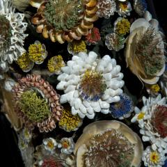 Three 19th Century Shellwork Flower Sculptures - 1214888