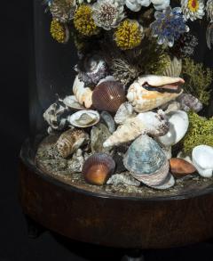 Three 19th Century Shellwork Flower Sculptures - 1214893