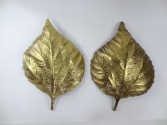 Tommaso Barbi Pair of Large Brass Leaf Sconces by Tommaso Barbi - 576334