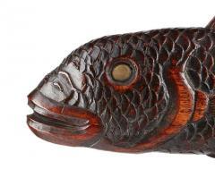 Torrent Fish - 2058376