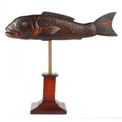 Torrent Fish - 2058378