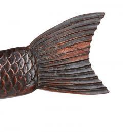 Torrent Fish - 2058380