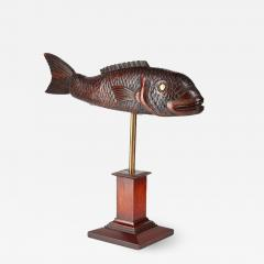 Torrent Fish - 2060164