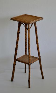 Tortoise Shell Bamboo Plant Stand - 1077795