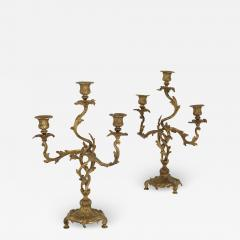 Two antique Rococo style gilt bronze candelabra - 1579242