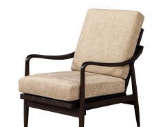 Vintage Mid Century Modern Lounge Chair - 1835781