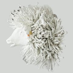 White Sheep Trophy Rasta FR3509 - 1730618