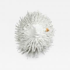 White Sheep Trophy Rasta FR3509 - 1731955