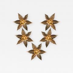 Willy Daro One of Five of Willy Daro Style Brass Flowers Wall Lights - 988043