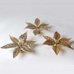 Willy Daro One of Five of Willy Daro Style Brass Flowers Wall Lights - 1337026