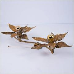 Willy Daro One of Five of Willy Daro Style Brass Flowers Wall Lights - 1337030
