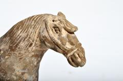 Yuan Dynasty Figure of a Horse - 1652433