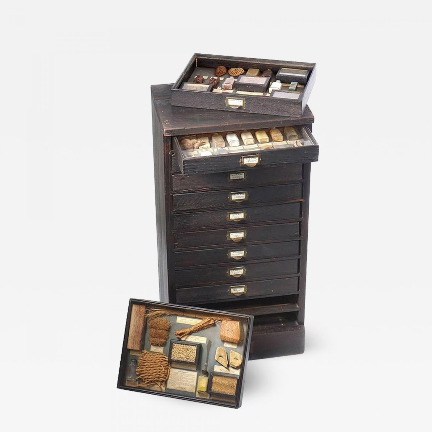 1800s cabinet of educational collections