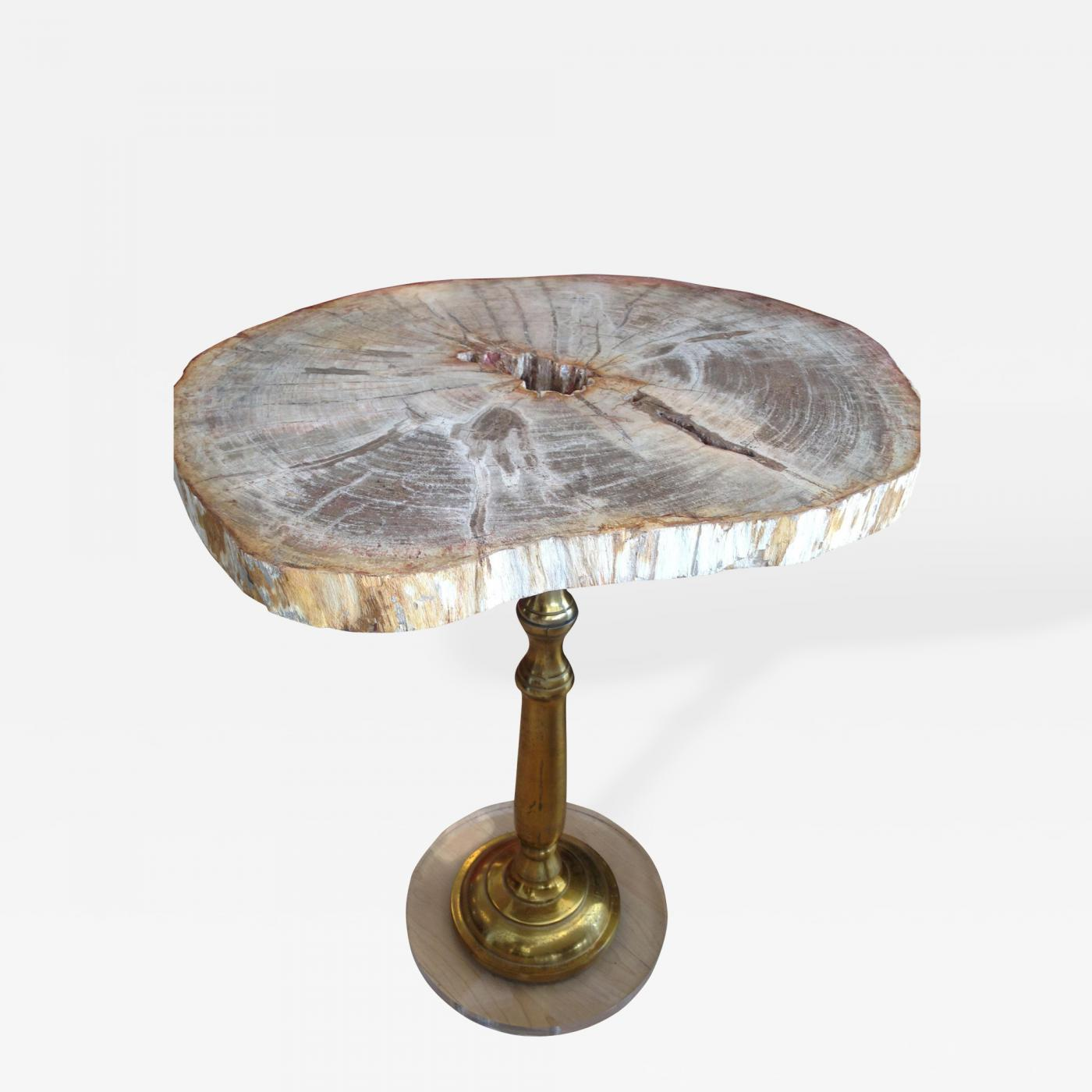 Petrified wood side table with lucite base for Side table base